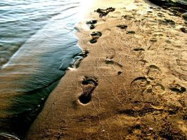 footsteps in the sand by toxicdots