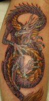Dragon by Phedre1985