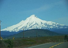 Mt. Hood by Synaptica