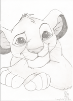 Simba in Pencil by ExpeditionFantasy