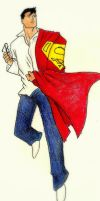 Glasses, Cape, two identitys by Erica-Danes