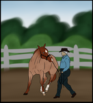 2014 World Western Finals - Zara Halter Training by FallbrookeEC