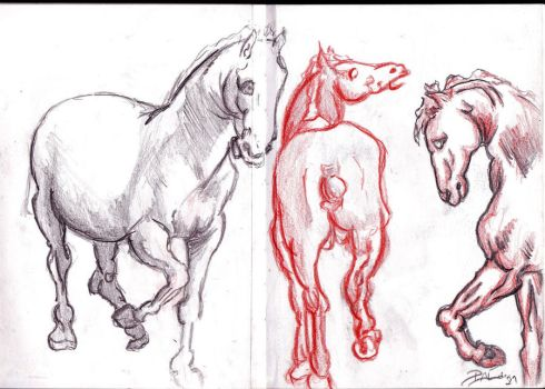 Horses in Graphic Diary by SleepingInMind