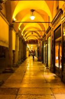 Bologna by night 3 by pers-photo