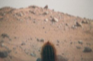 Cactus on Mars 2 by gangstergazelle