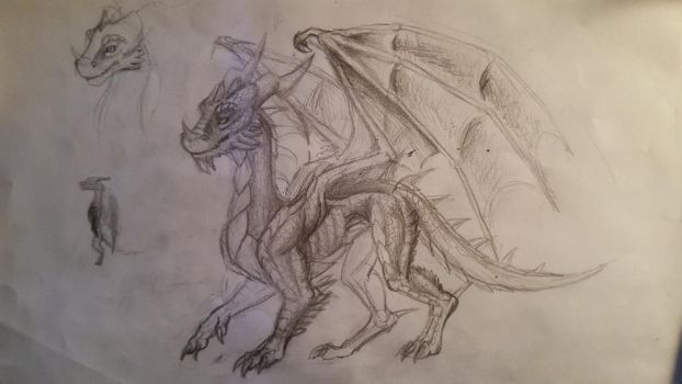 Dragon sketch by Sarah4361