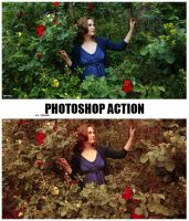 Photoshop Color Action by ReehBR