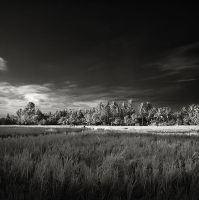 After the Harvest by andreupardales