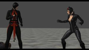 Catwoman and Talia vs Lady Shiva 2 by White777789