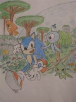 Sonic Colors colored by SonicStaryFan