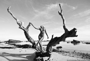 dry tree nude by OutdoorNudePhoto