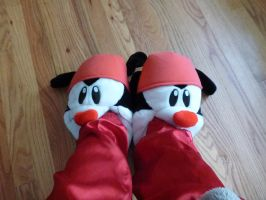 Wakko slippers, foot in mouth by ExileLink