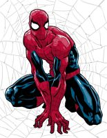 Spiderman by Fuacka
