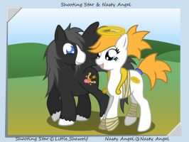 Nasty Angel and ShootingStar by FireAce by Little-shewolf9