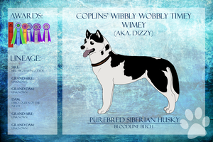BPIS BBIS Coplins' Wibbly Wobbly Timey Wimey CD NA by xMush-Kennelsx