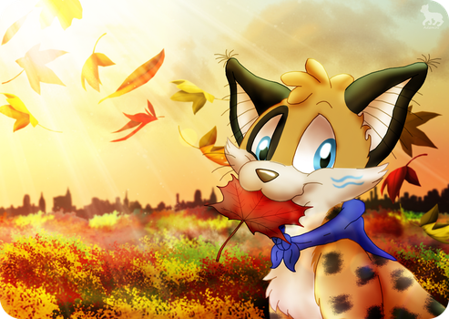 Colors of Autumn by Adamiro
