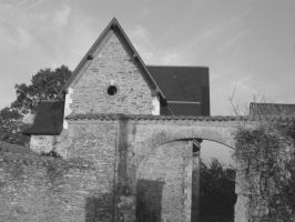 old house: black version by planzman