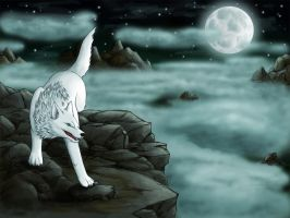 in the moonlight by argenteus-lupus