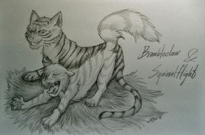 Brambleclaw and Squirrelflight by Marshcold