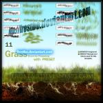 Brush Grass Set2 for Photoshop by FrostBo