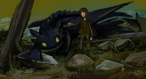 How to train your Dragon by RubyFeather