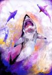 The dance of the sharks by fixtio