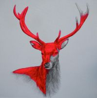 Wild and free by LouiseMcNaught