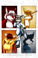 Darrik - Fox of Many Colors by shivaesyke