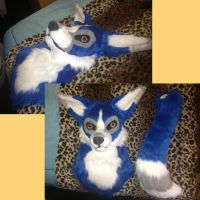 Cobalt Head Sale(Sold) by KahlaKawaii