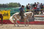 Taupo Rodeo 224 by Sooty-Bunnie