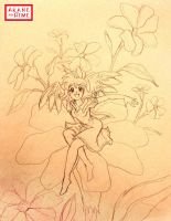 Flower Fairy by akane-no-Hime
