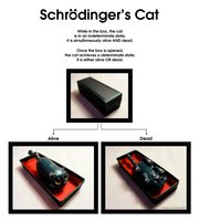 Schrodinger's Cat by krazykrista