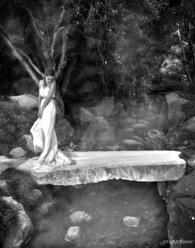 Evening Stream-Black and White by TarielOfLorien