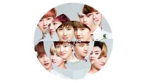 EXO Disc Wall by ArdeliaExotics
