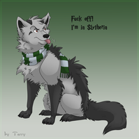 Slytherin Terry by Iguana-in-Darkness