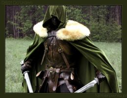 Drizzt Do'Urden by farmer-bootoshysa