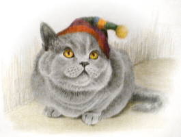 Fat cat with hat by ficus