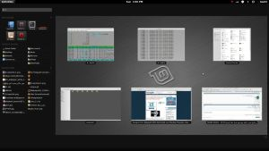 Linuxmint-9-gnome-shell by Linux4SA