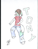 Contest entry: Tony by Da-Dingo