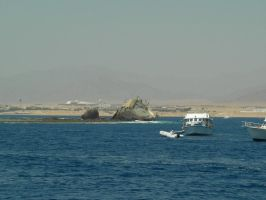 Sharm.6 by SaliroO