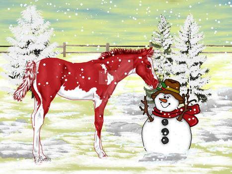 Christmas foal 2 by painteddreamsdesigns