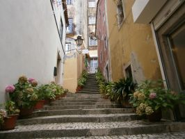 Sintra (Stairs) by Boias