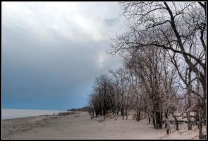 Winter at the beach by ricky49