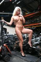 Which engine would you prefer by Singingnaturist