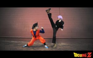 DBZ : Goten VS Trunks by beethy