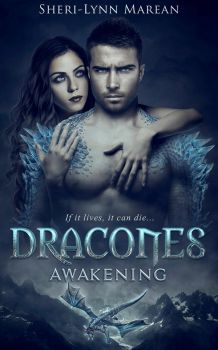 Dracones - Book cover by Mihaela-V
