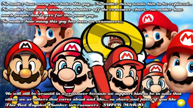 I Support Super Mario in Crossovers pic by IcePony64