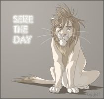 SEIZE THE DAY by 1skylight1