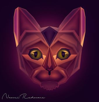 Cat Face by NaouriRedouane1998