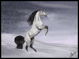 Frosted Spell. by xDallan
